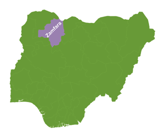 Zamfara killings: Perpetrators from B/Faso, Chad, Niger, others — Miners