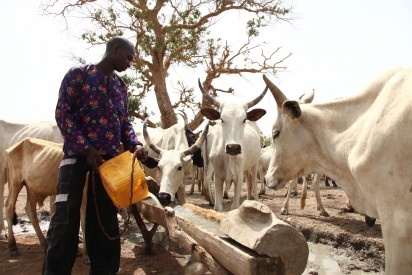 Farmers-herdsmen clash: Ekiti monarch faults Police over casualty claim