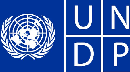 UNDP's agricultural intervention programme to boost rice production in Nigeria
