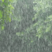 NiMet predicts thunderstorms, rains for Sunday