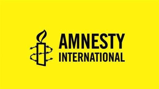Amnesty International: CSO condemns alleged govt sponsored protest