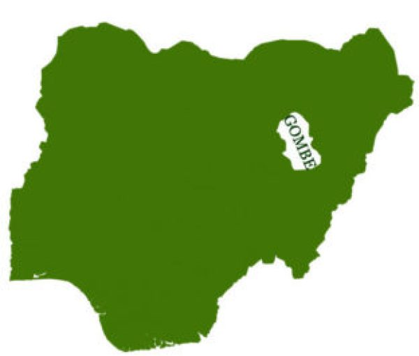 Agribusiness: Gombe Farmers receive FG's irrigation pumps, seeds, others