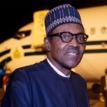 Buhari visits 2 survivors of jet crash