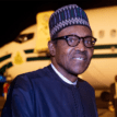 Buhari visits 2 survivors of jet crash