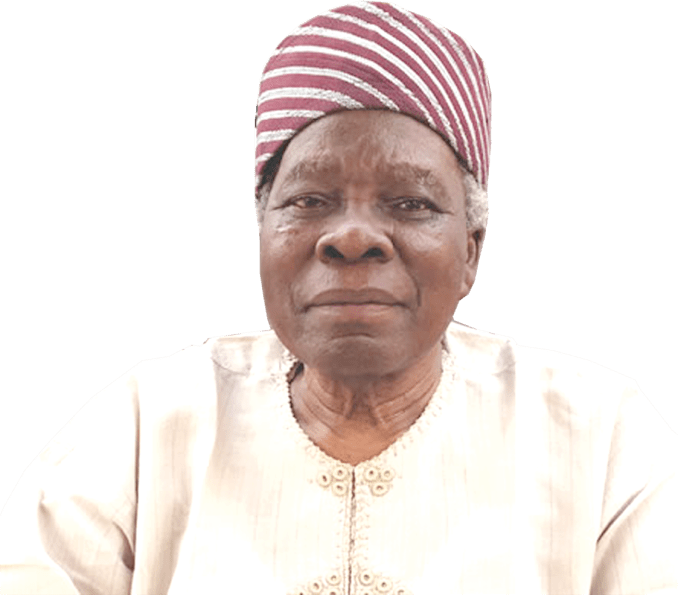 Nigeria not working for anyone, let's retrace our steps ― Akintoye