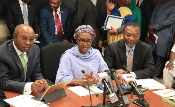Minister of Finance, Ms. Zainab Ahmed (M)