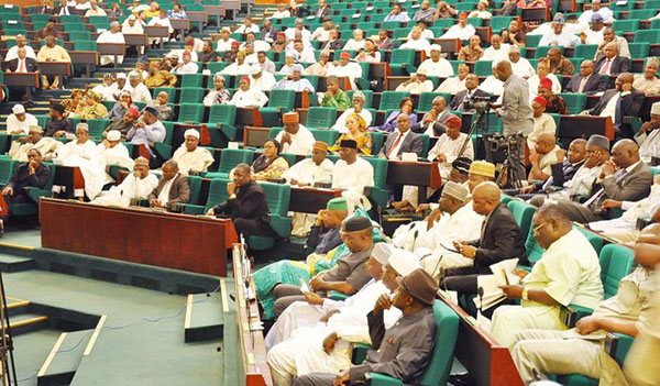Food security: We'll make law on GES to boost farm inputs — Reps