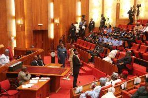NASS, ministerial, Senate