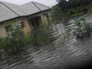 •Flood, Edo