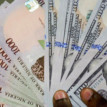 Naira4Dollar scheme may have boosted foreign exchange inflow