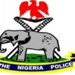 Police arraign two men over illegal possession of gun, stealing