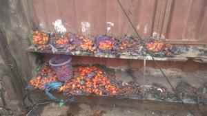 Santana market, Edo