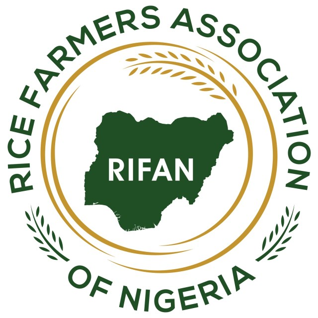 Farmers can grow rice all year round in Lagos, says RIFAN Dep President