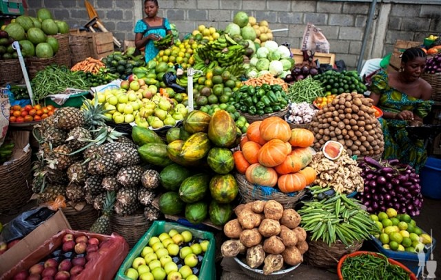 Food scarcity is source of insecurity — Scientist