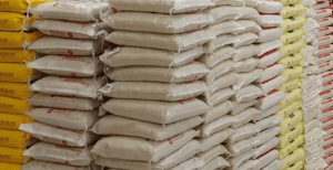 Border Closure: We're set to crash price of 50kg bag of rice to N14, 000-Santus