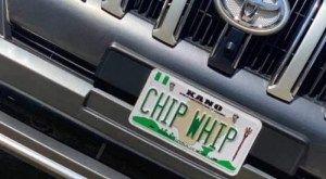 FRSC, DSS, chip whip