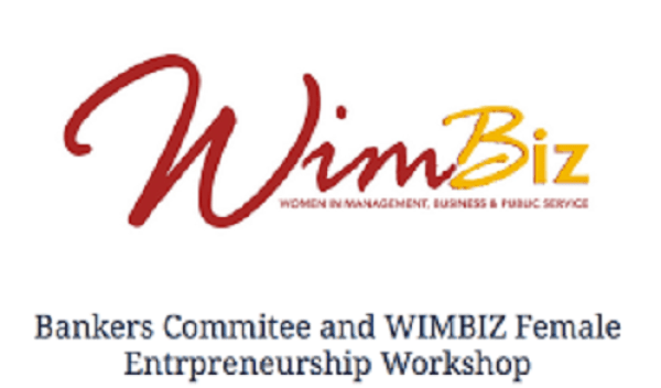 Politics: Electoral violence, funding, others, threats to female participation — WIMBIZ