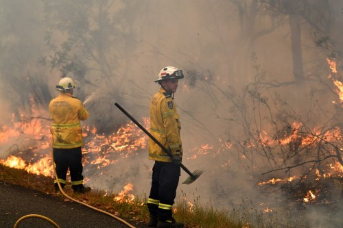 Australia holds national summit online to examine country's worsening bush fire conditions