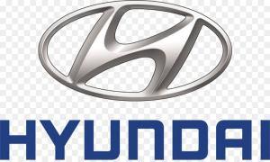 Hyundai, Electric Motor