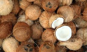 Lagos to increase coconut value chain to N350bn — Olusanya