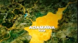 Scores dead, others displaced as communal clash rocks Adamawa
