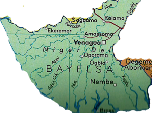 Bayelsa community seeks govt. intervention as criminals sack settlement