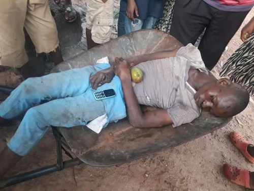 Barrow-pusher electrocuted while trying to pluck mango fruits with iron