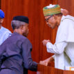 FG begins disbursement of N20,000 to 1m Nigerians