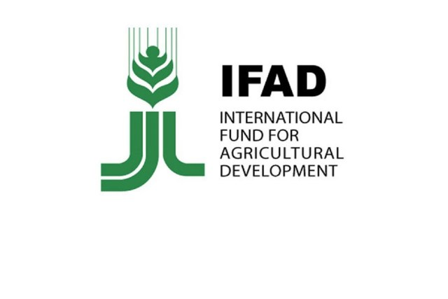 IFAD charges world leaders to increase investment to assist small-scale farmers adapt to climate change