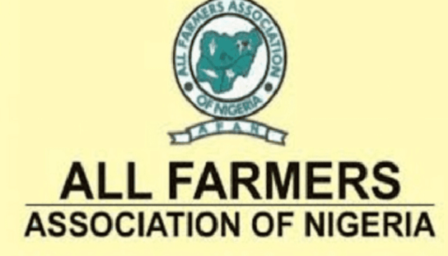 AFAN urges FG to tackle challenges confronting maize cultivation