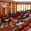 Anger, frustration,envelope debate on insecurity in the Senate