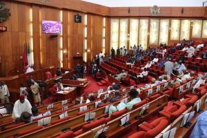 The Senate receives Buhari's 2021 budget proposal for the Police Trust Fund
