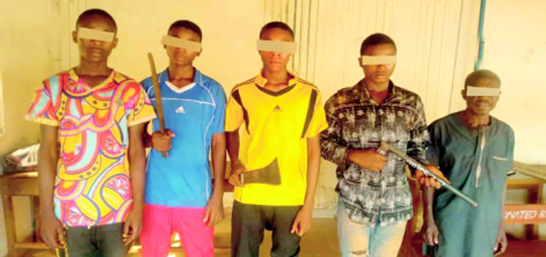 ENUGU: Teenagers among 16 notorious criminals in police net