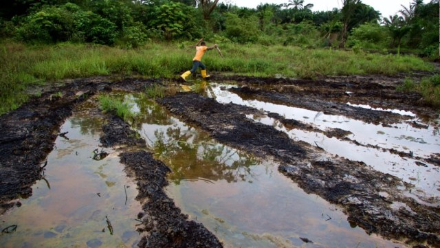 Niger Delta polluted environment facing systematic neglect ? Nimmo Bassey