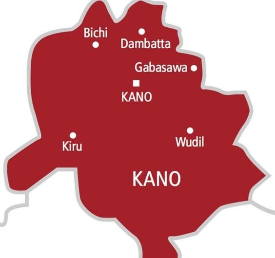 NAFDAC investigates cause of strange disease in Kano