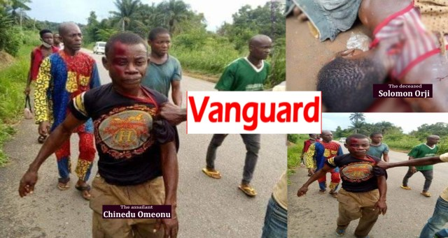 Man kills cousin with cutlass over mango fruits in Abia