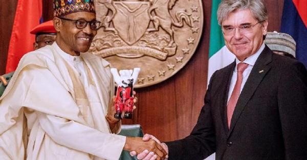 Nigeria's energy crisis: A threat to biodiversity