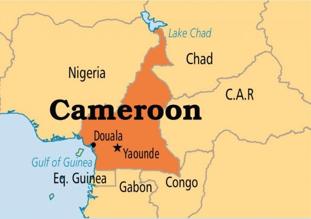 Eight children killed in Cameroon school attack ― UN
