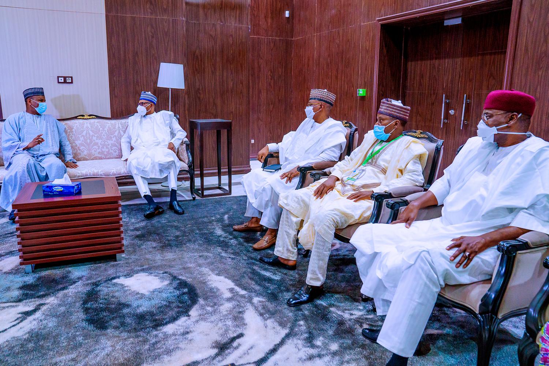Mali crisis: ECOWAS leaders hold virtual summit
