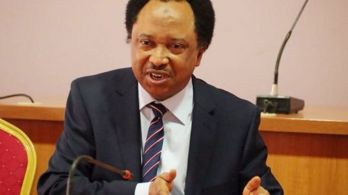 Edo has become Syria with terror groups - Shehu Sani
