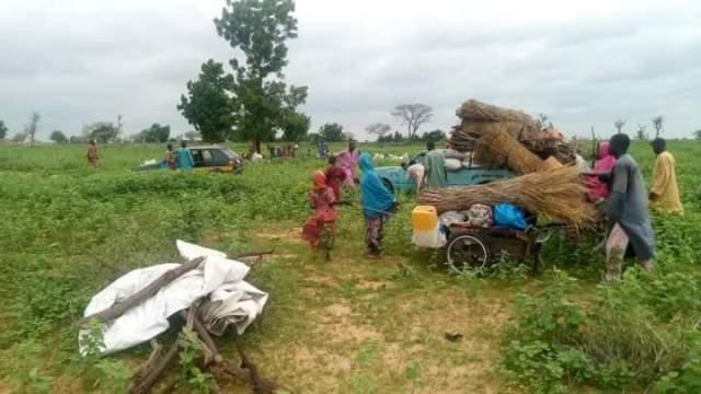 Boko Haram, Borno State