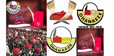 OHANAEZE ELECTION:Okwukwu drags Nwodo to court