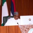 [Updated] Buhari directs CBN to suspend forex for food items, fertiliser