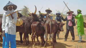 The herdsmen, tribesmen and statesmen: Discordant cord of three strands