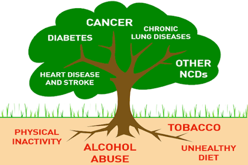 Non Communicable Diseases kill 600,000 Nigerians annually ― NCD Alliance