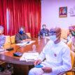 Photos: Osinbajo chairs virtual Economic Sustainability Committee meeting
