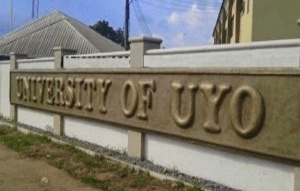 UNIUYO: We followed due process to pick new Vice-Chancellor —Essien