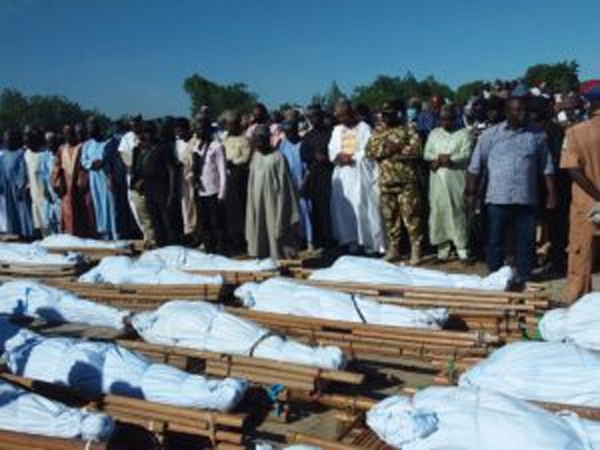 Borno Farmers' Killing: AFAN expresses sadness, says disaster looms in food system