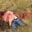 VIDEO: Kidnapped Nasarawa APC Chairman murdered