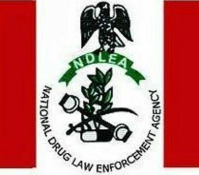 NDLEA intensify offensive against illicit drugs' production labs